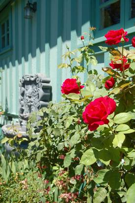 Porch View